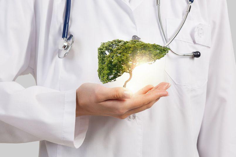 Wybieramy ciekawe leki na wątrobę
